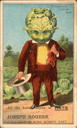 A cabbage-head in an advert