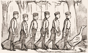 A Punch cartoon showing recruits goose-stepping.