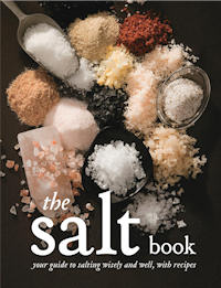 The cover of 'The Salt Book'
